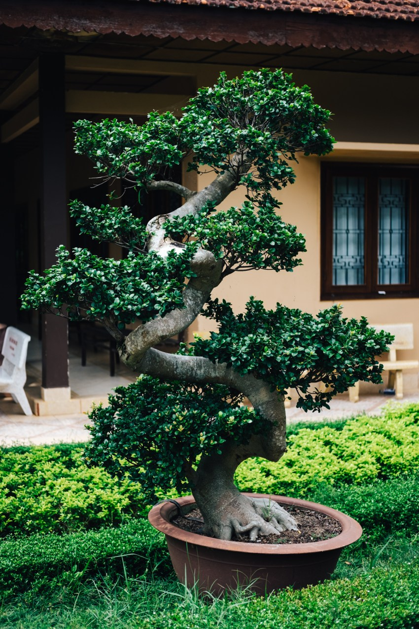 Wedding Photographer Vietnam 143