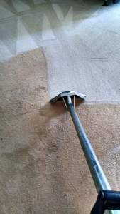Carpet Cleaning - Deep Clean 1