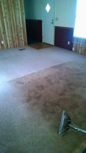 Carpet Cleaning - Deep Clean 2