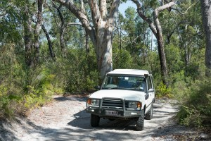 Sandy Inland Route on Fraser Island