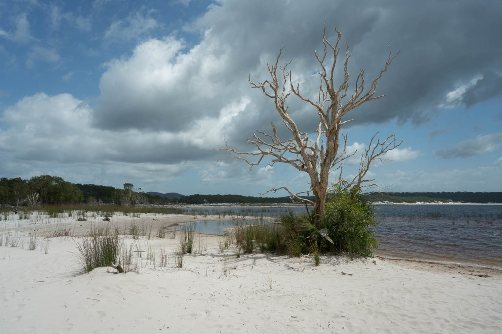 Lake Boomanjin on Fraser Island