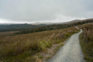 Hiking near the Village at Tongariro National Park