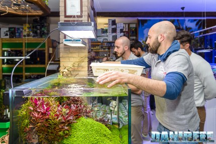 201704 acquario club, aquascaping, itau 33 Copyright by DaniReef