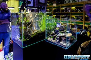 201704 acquario club, aquascaping, itau 42 Copyright by DaniReef