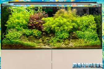 201805 aquascaping, dennerle, interzoo, layout 22 Copyright by DaniReef