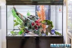 201805 aquatlantis, decorazioni, interzoo 18 Copyright by DaniReef