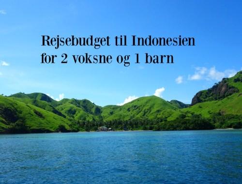 Rejsebudget til Indonesien