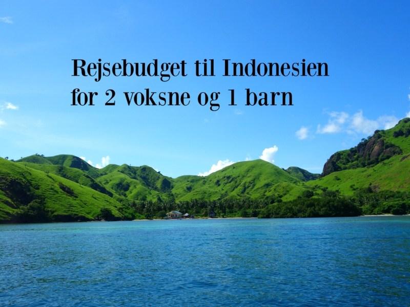 Rejsebudget til Indonesien for 2 voksne og 1 barn