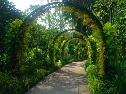 Blomsteralle i Botanisk Have