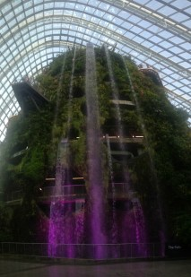 Cloud Forest vandfald