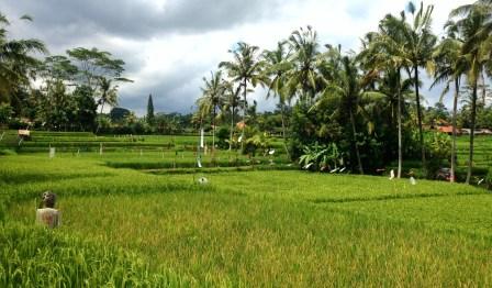 Cultural Landscape of Bali Province in Indonesia