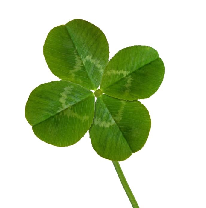 Social Media Marketing Success Doesn?t Have To Be A Hunt For A Four-Leaf Clover