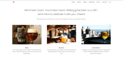 Craft Beer Diaries lead section