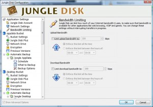JungleDisk Bandwidth Settings