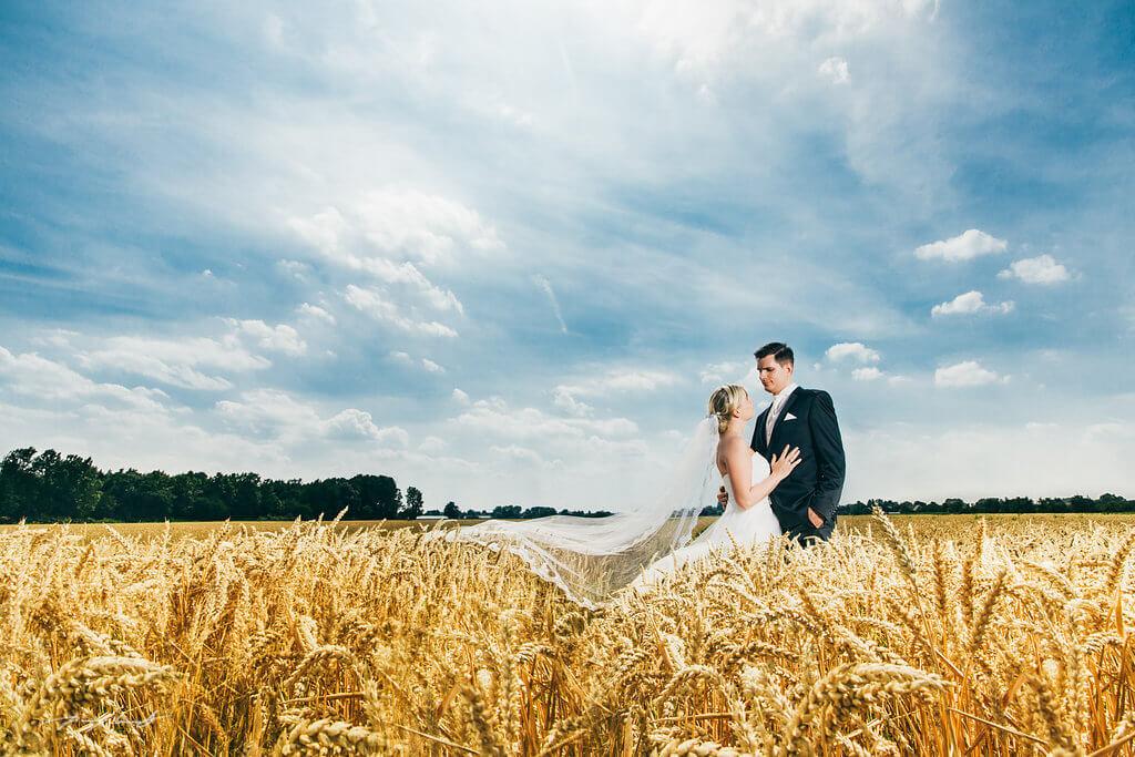 Hochzeitsfotos Kornfeld  Hochzeitsfotograf Hamburg