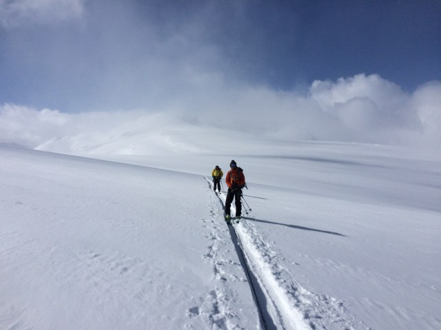 Crossing the Wapta Icefield on our way back from Mt Rhondda