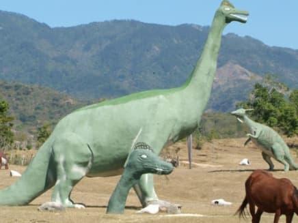 parc de Dinosaure vert