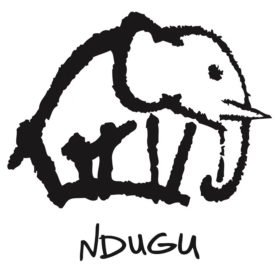 "Première: Nieuwe single Ndugu (+ interview) – ""Dreamin'"""