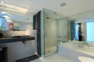 Dans Glass Frameless Shower Door