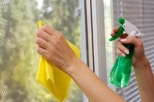 Cleaning Your Windows for Spring