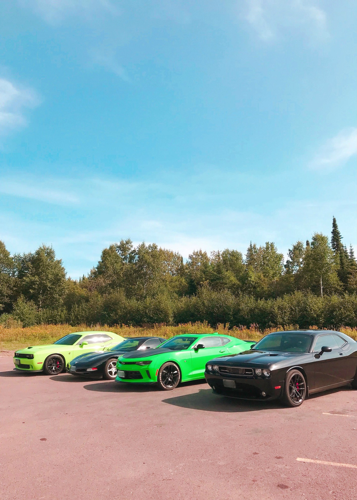 Hellcat, Corvette, Camaro and Challenger Lined Up