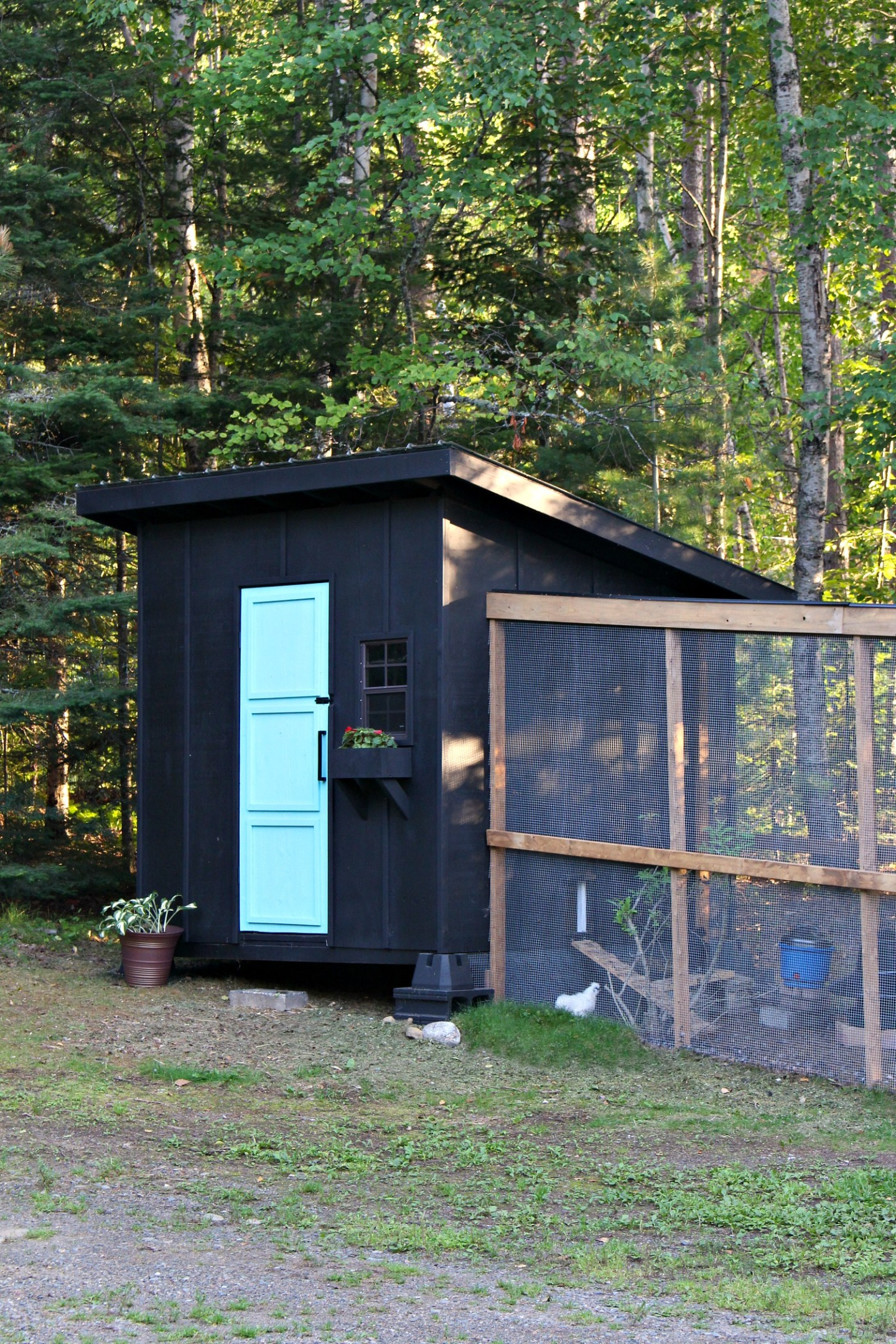 Modern Chicken Coop Design - See the Step by Step Build Tutorial