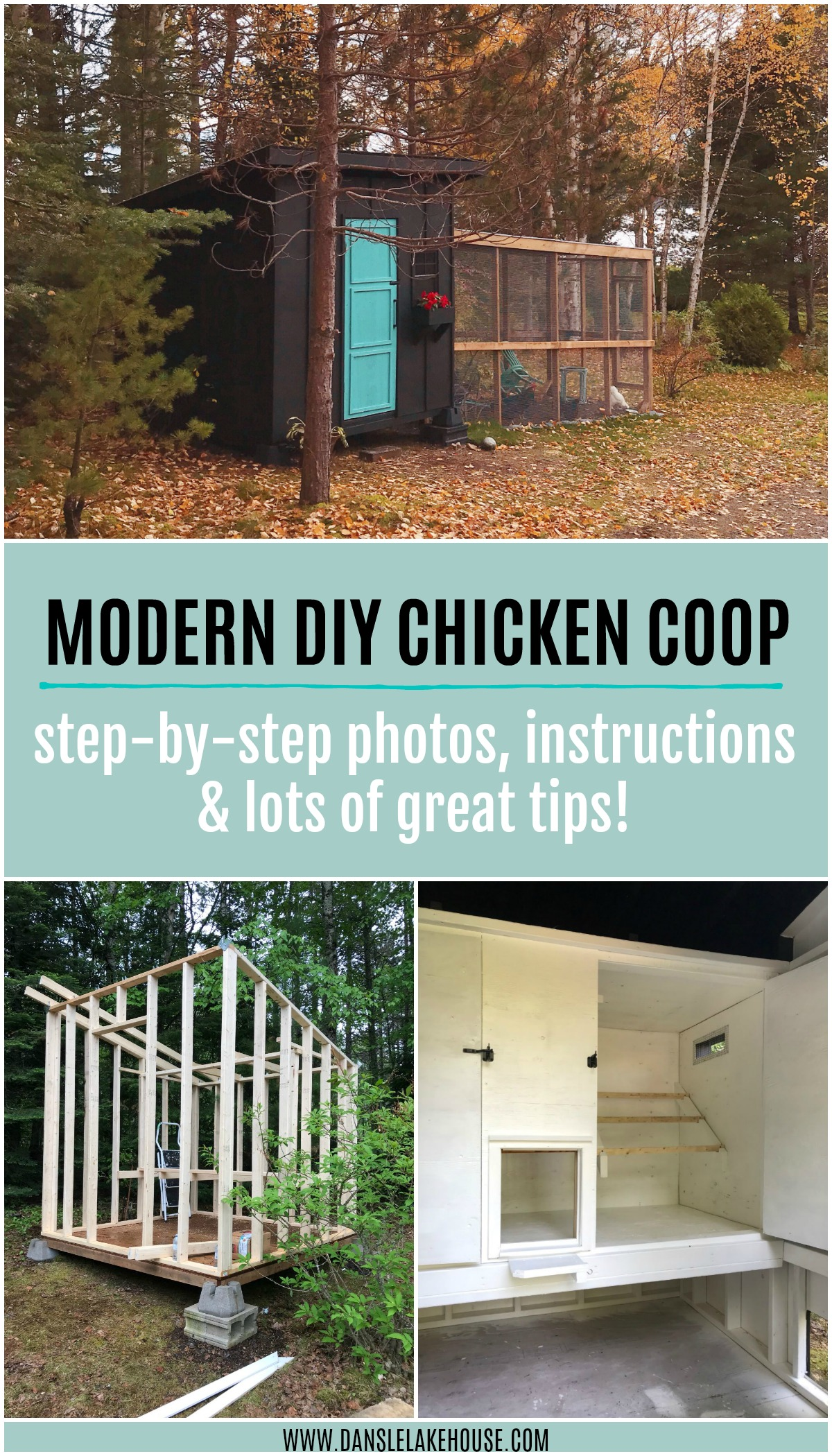 Learn How to Build this Modern DIY Chicken Coop