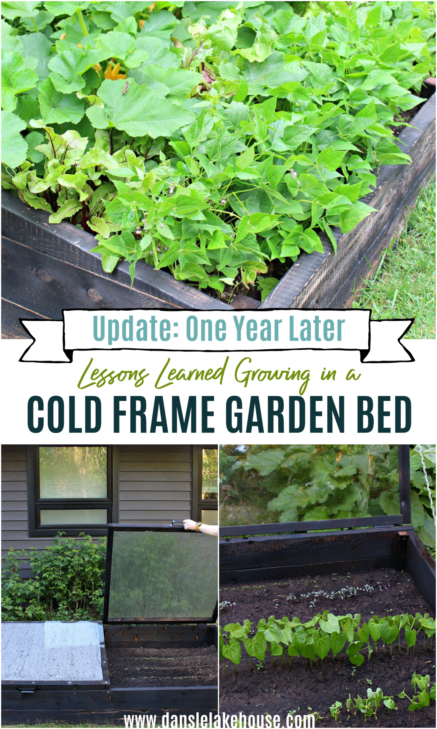 Lessons Learned Growing in a Cold Frame Garden Bed