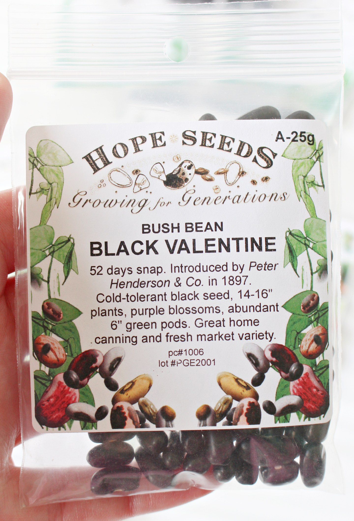 Best Places to Buys Seeds Online in Canada
