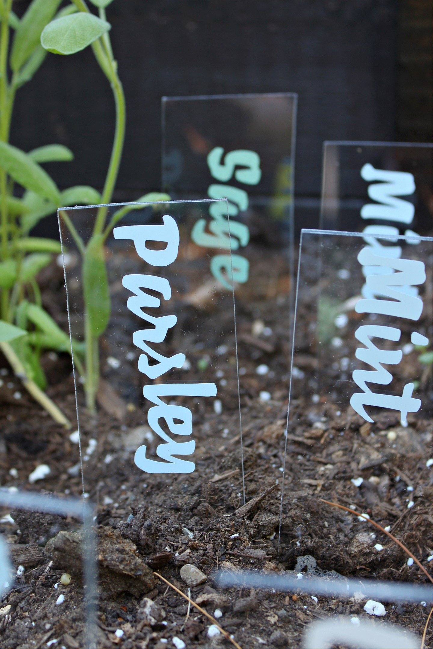 DIY Cricut Garden Markers