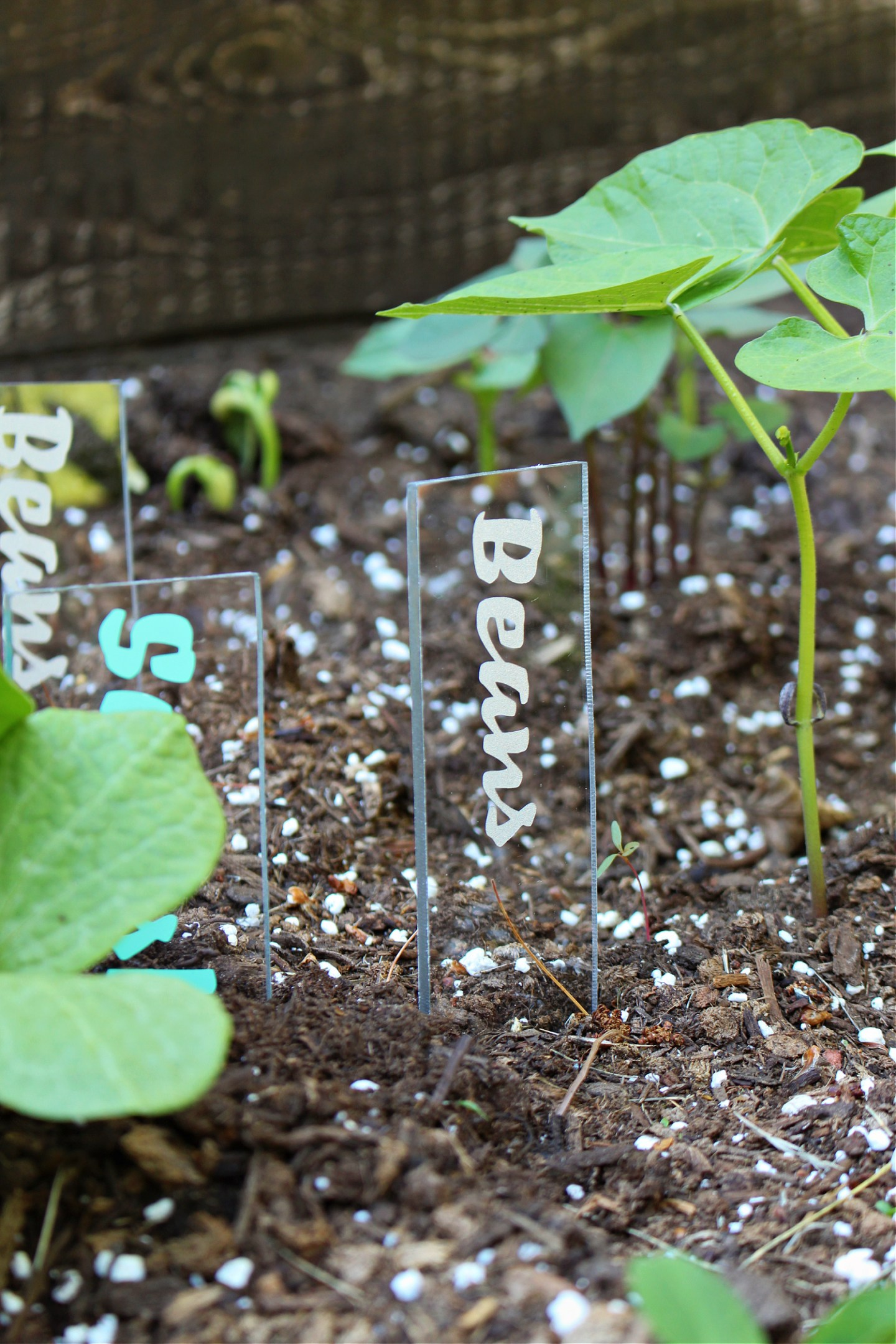 How to make acrylic garden markers