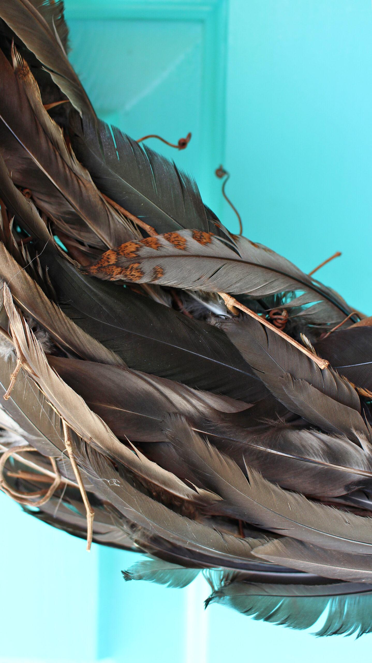 Chicken Feather DIY