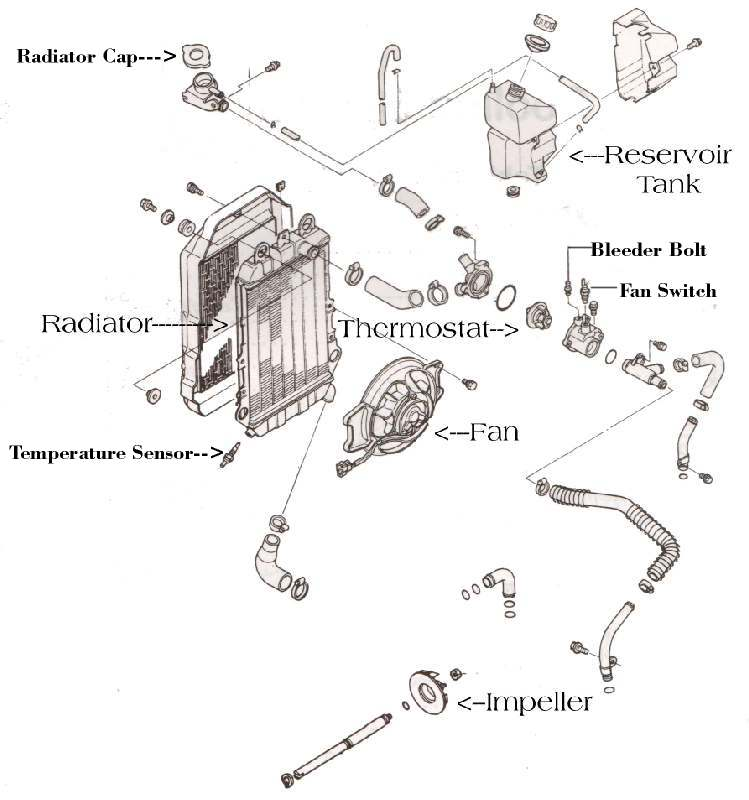 Suzuki Radiator Diagram. Suzuki. Auto Parts Catalog And
