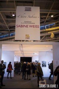 """Exposition """"Chère Sabine"""""""