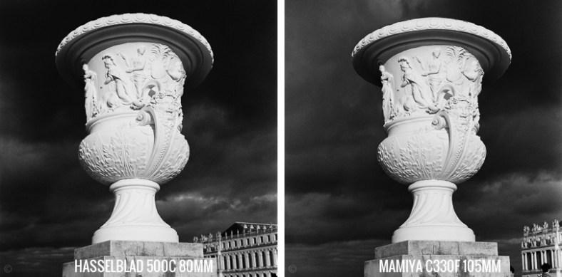Vase Hasselblad 500C vs Mamiya C330F Tri-X
