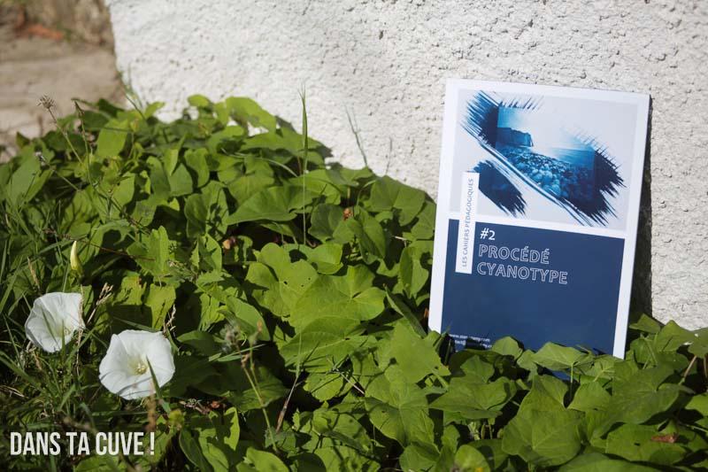 livre les cahiers p dagogiques 2 proc d cyanotype par. Black Bedroom Furniture Sets. Home Design Ideas