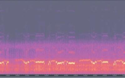 Sonidos de una Flautita  Huichol ( Wixarrika )