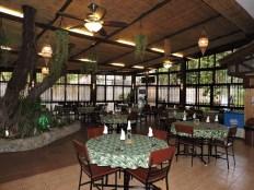 DD Chico Cafe1