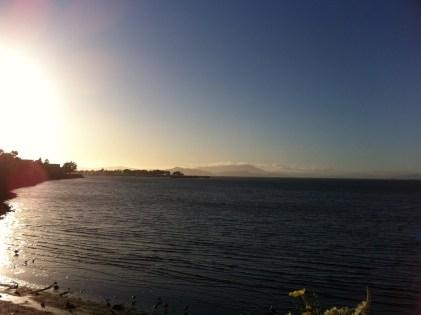 The Bay - Oakland, California