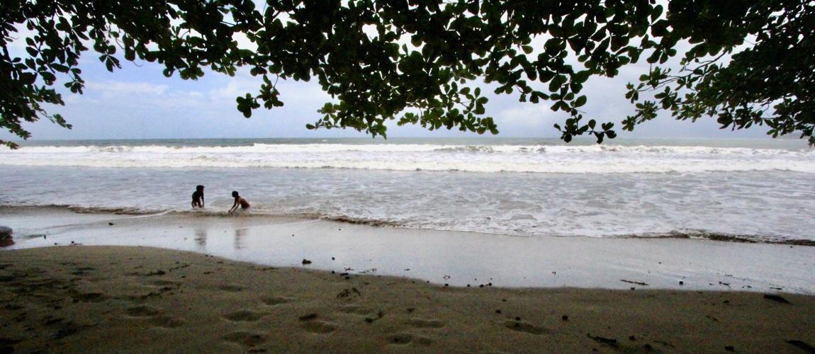 Wat te doen in Cahuita National Park in Costa Rica? Juist ga op pad en spot wilde dieren