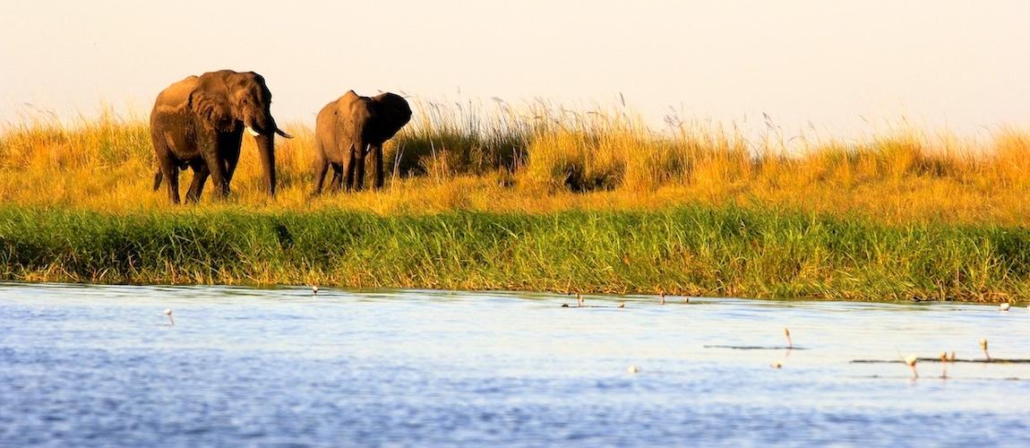 Botswana tips voor jouw reisvoorbereiding naar Afrika