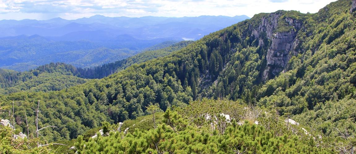 Risnjak National Park in Kroatie bezoeken