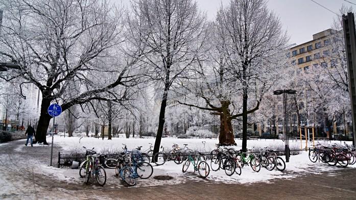 Park at Willy-Brandt-Platz