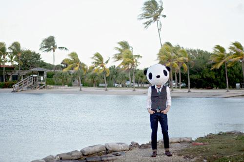 Panda-Standing3-500
