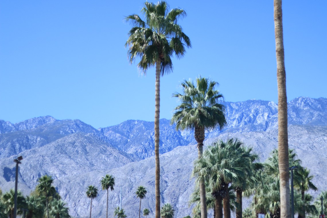 15 Tips For Alt Summit First Timers - Things To do in Palm Springs
