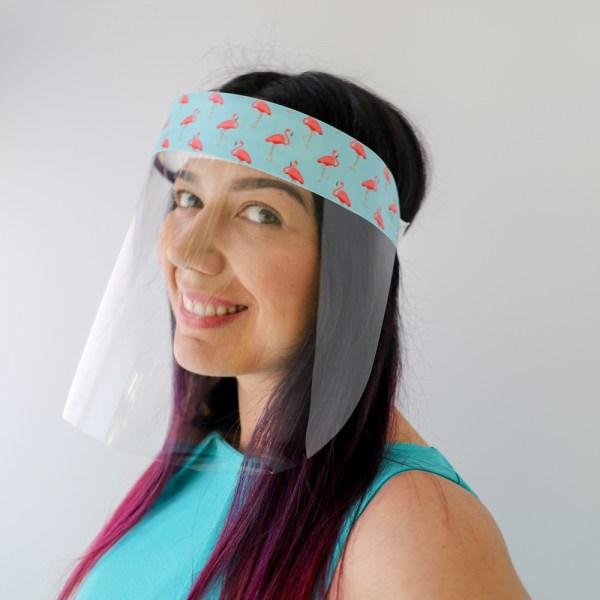 Flamingo Protective Full Length Plastic Face Shield in Light blue