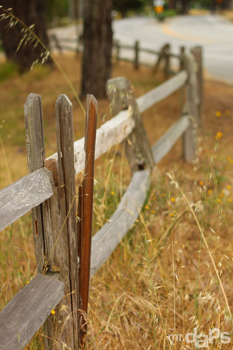 0490_Broken_Fence_June_22_2014