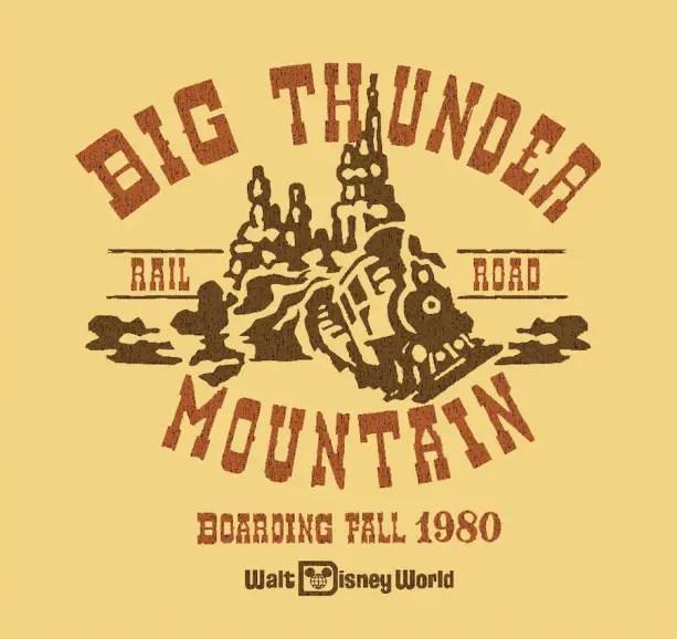 Disney Parks Shirt (4)