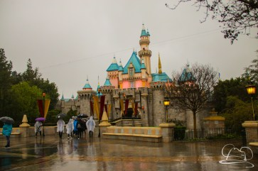 DisneylandResortRainyDay-27