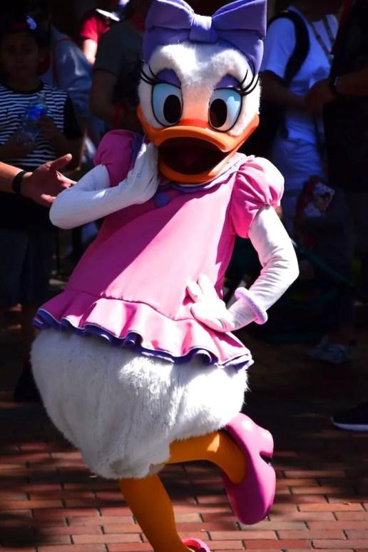DaisyDuck 1